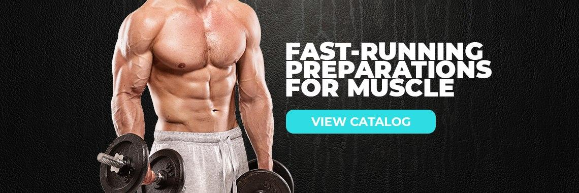 Fast-running preparations for muscle