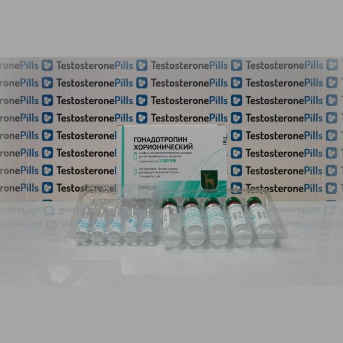 Gonadotropina corionica FGYP Pianta endocrina di Mosca | TPT-0288