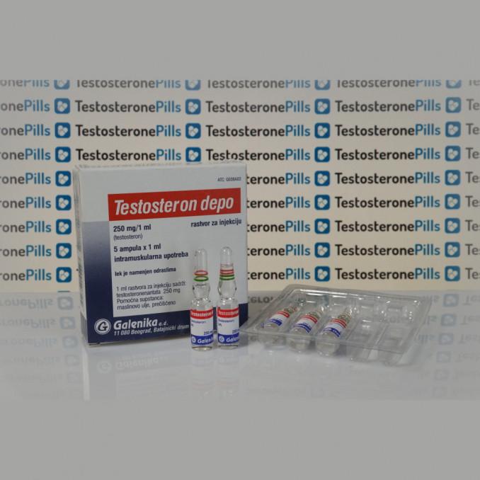 Testosteron Depo (Testosteron Enanthato) 250 mg Galenika | TPT-0156